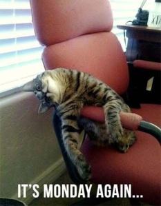 Mondays make the weekends seem so short.